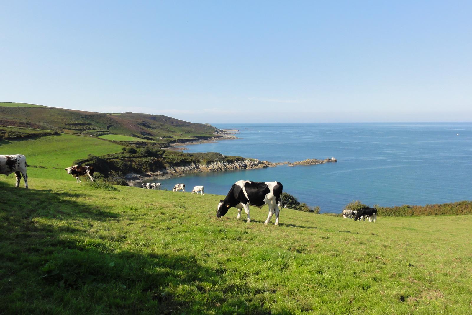 Normandie mer et campagne