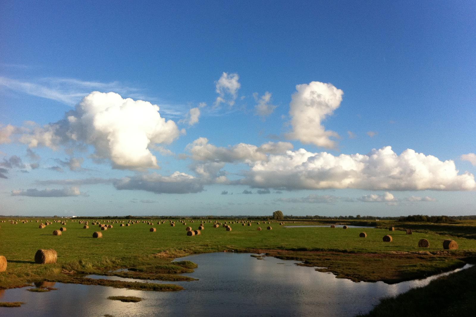 polders isigny-sur-mer calvados